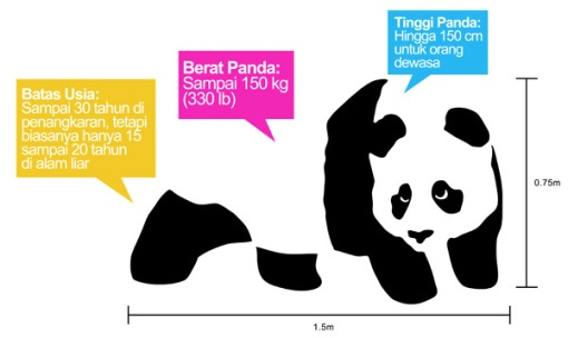 Weight Height Panda