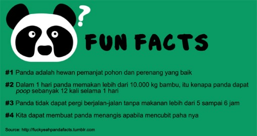 Panda Fun Facts 2